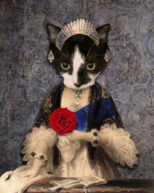 Egc El Gato Coffeehouse Custom Pet Portraits Pet Portraits Cats