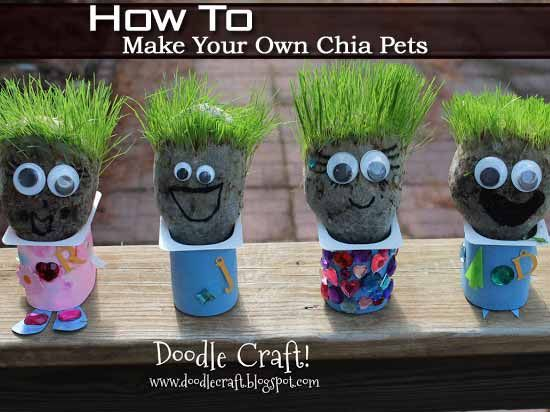 How To Make Your Own Chia Pet Chia Pet Summer Crafts For Kids Seed Activities For Kids