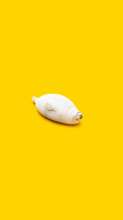 Pin By Peepking On Yellow Aesthetic In 2019