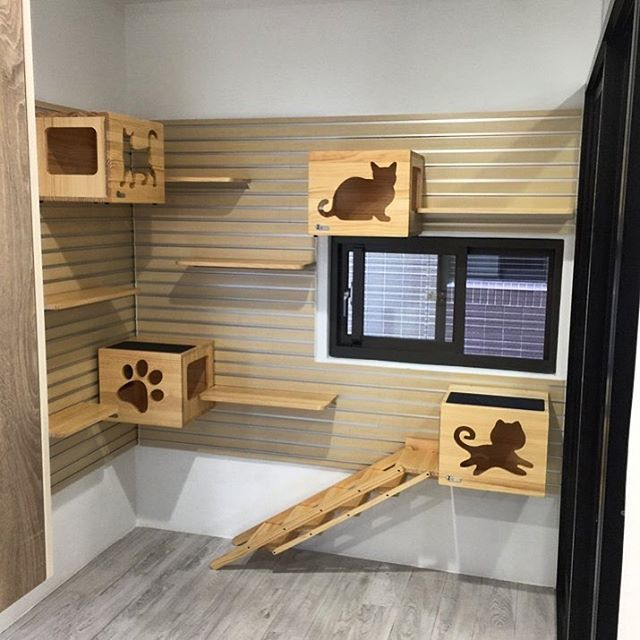 Yes this is for the Cats 🐈🐈 Modular Catswall in wood. All
