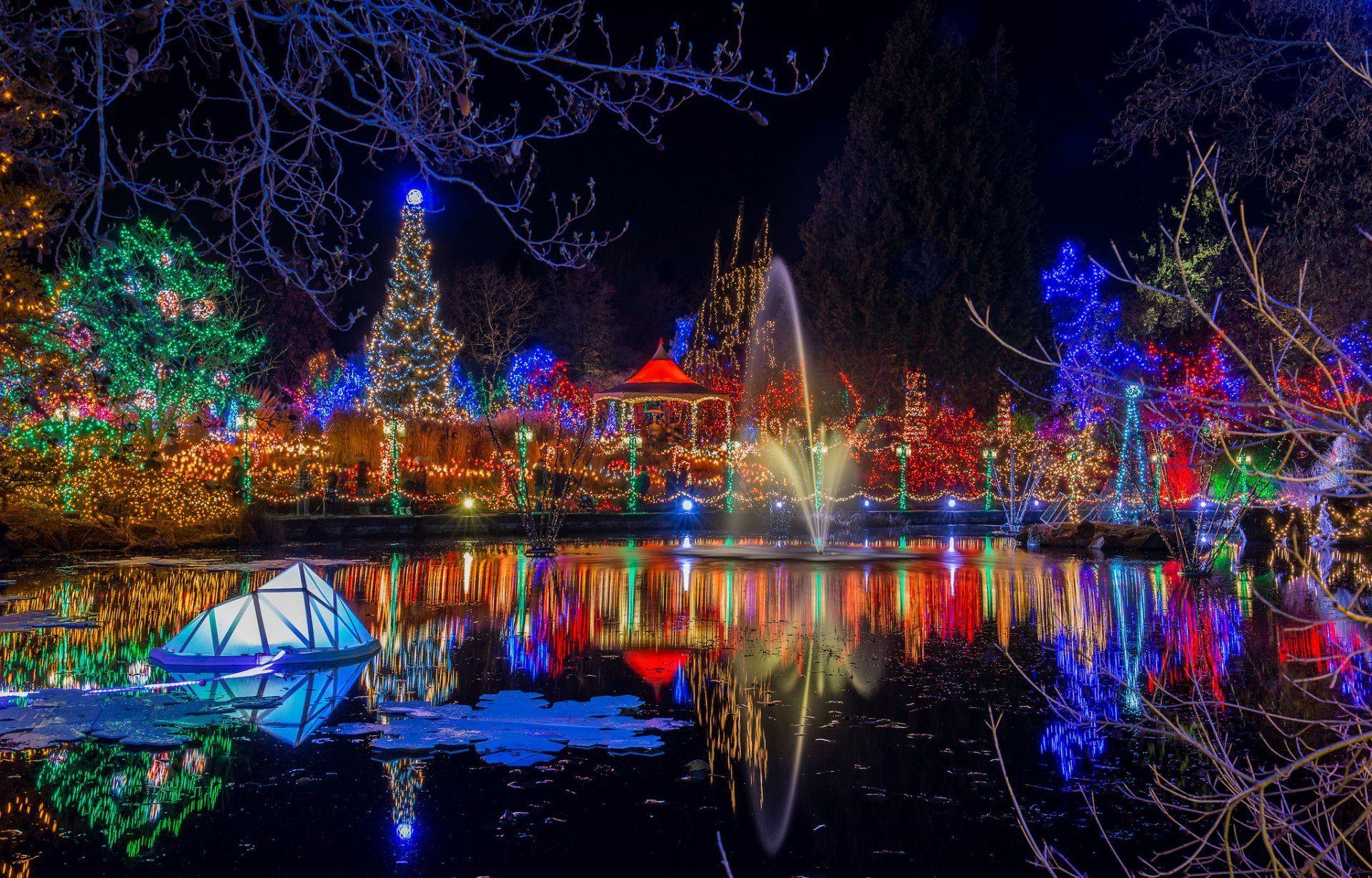Related Image Best Christmas Light Displays Holiday Lights Christmas Lights