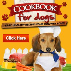 Dog food cook book recipes for my animals friends dog food cook book recipes forumfinder Image collections