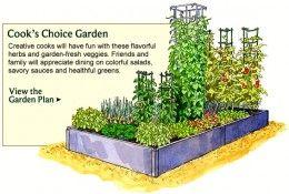 Superbe Vegetable Garden Planner   Layout, Design, Plans For Small Home Gardens