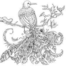 Afbeeldingsresultaat voor detailed landscape coloring pages for adults