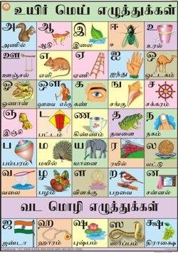 Tamil Alphabet Chart | For Meeee | Alphabet charts, Alphabet