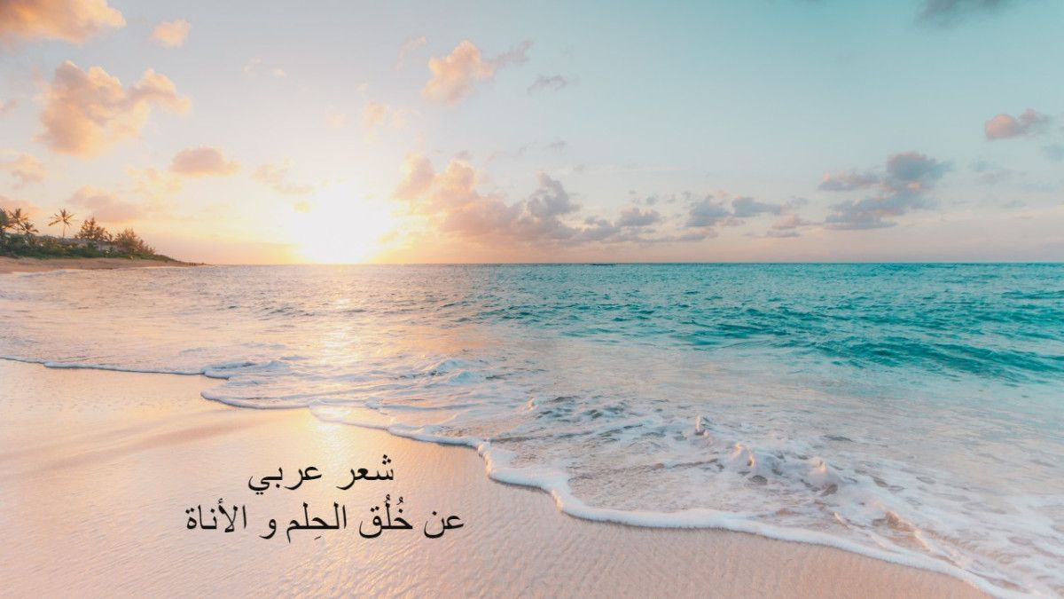 شعر عربي عن خ ل ق الحلم و الأناة Arabic Words Outdoor Beach