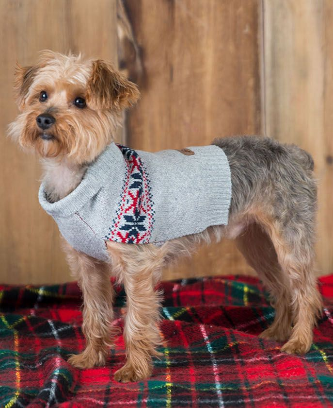 This Snowflake Patterned Dog Sweater By Eddie Bauer Keeps Pups Warm