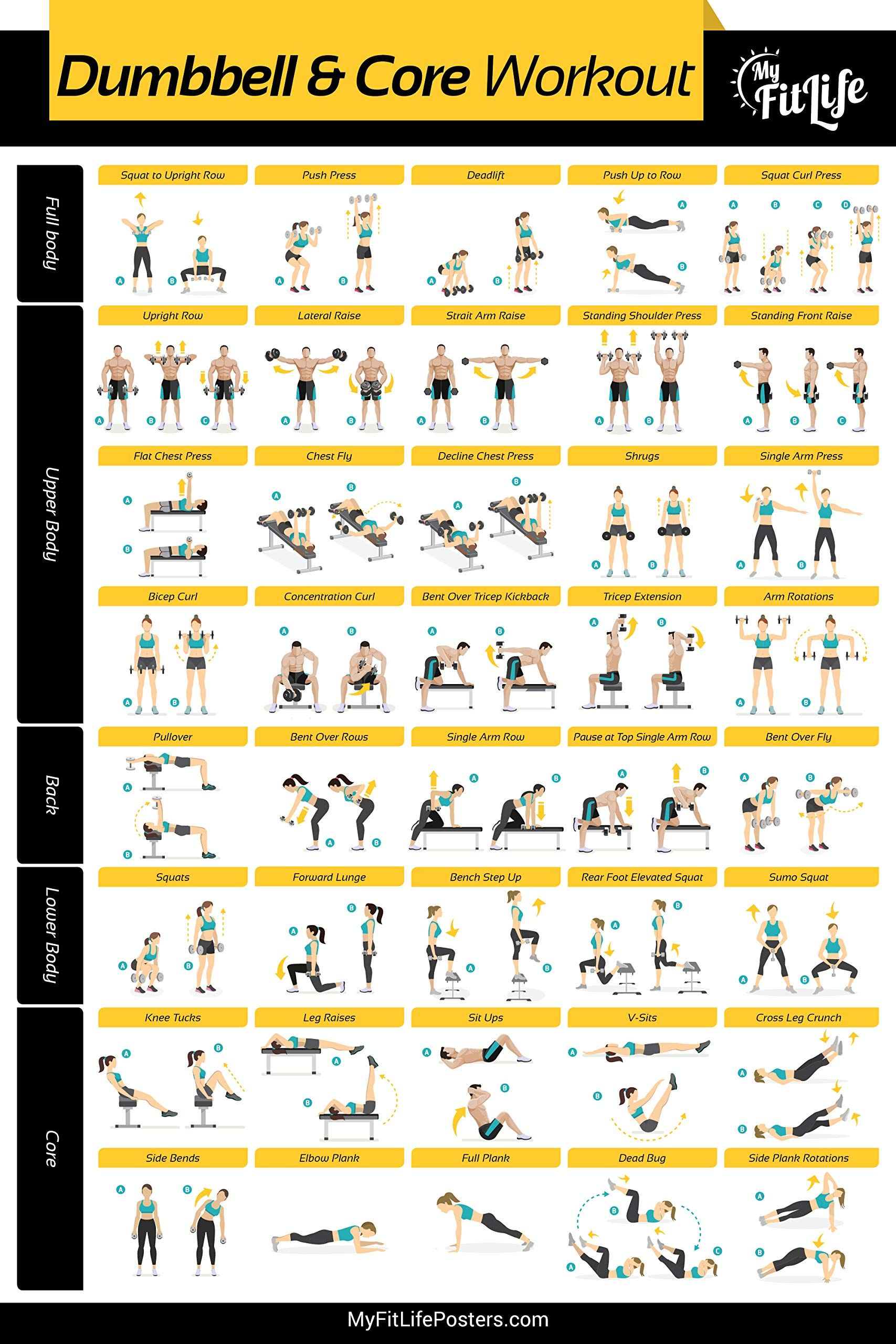 My Fit Life Gym Dumbbell and Core Workout Poster L