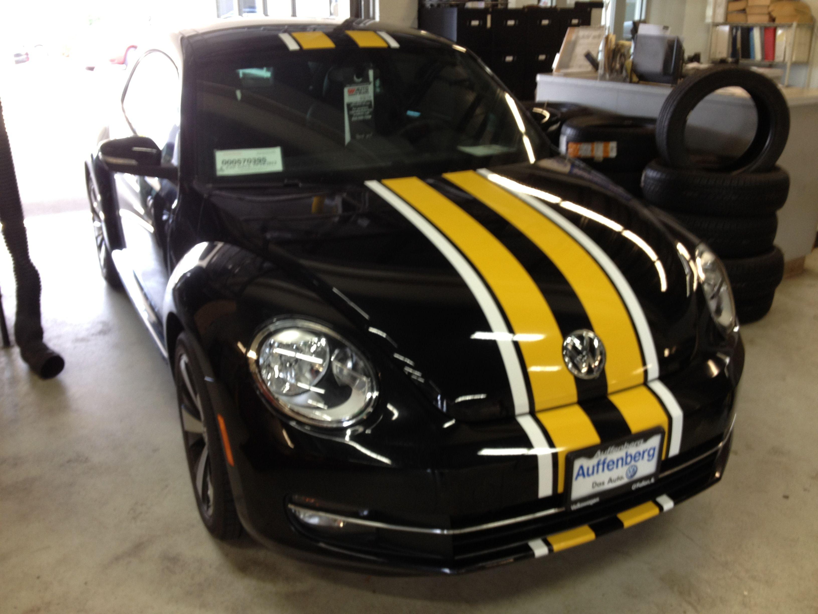 Vw Beetle Custom Stripes Clear Auto Bra St Louis Custom