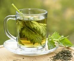 Het regelmatig drinken van brandnetelthee is zeer goed voor je gezondheid. Deze thee kan dus ook jouw gezondheid enorm bevorderen en een boost geven. Lees