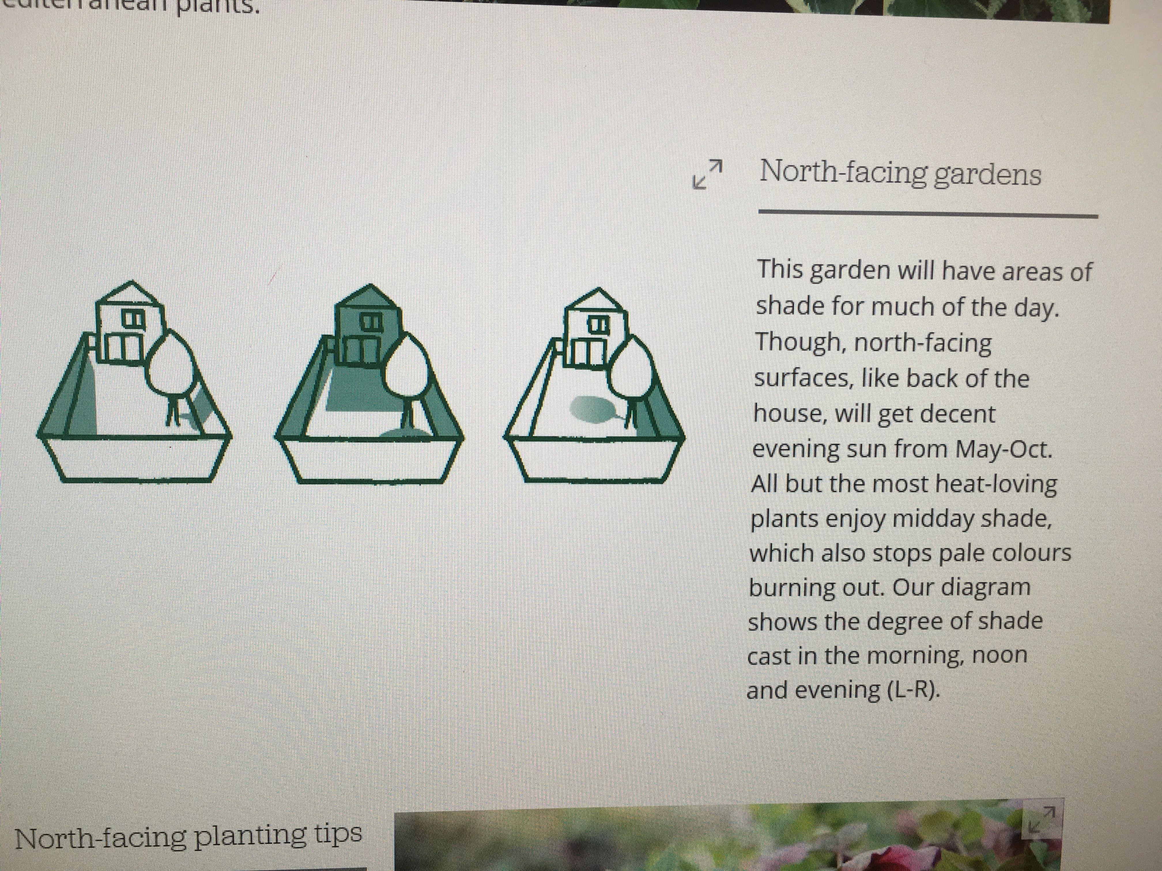 Pin by Kirsten McManus on Garden | North facing garden ...