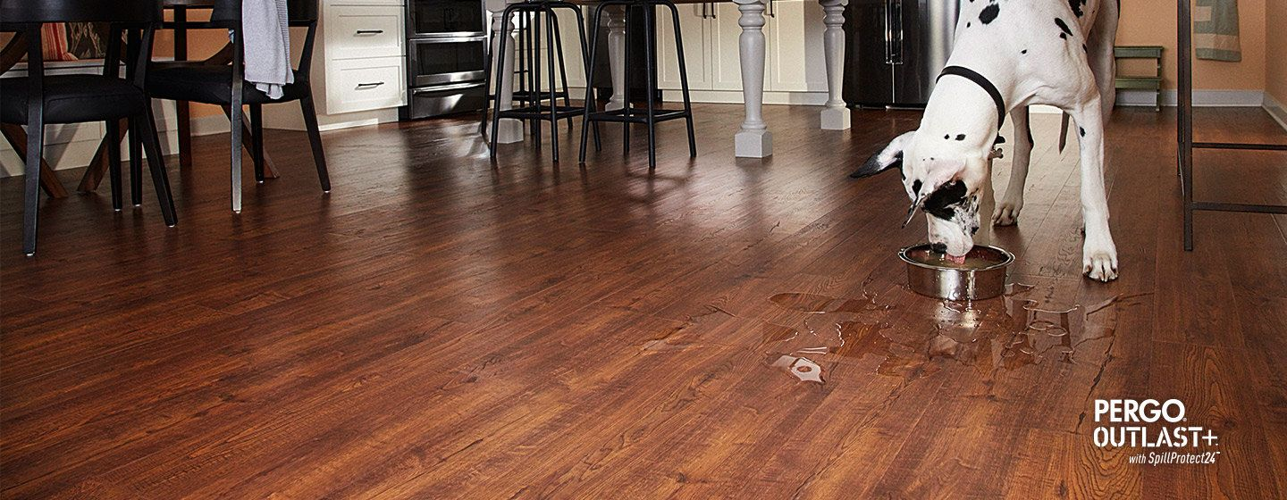 Pergo Outlast With Spill Protect Find Durable Laminate