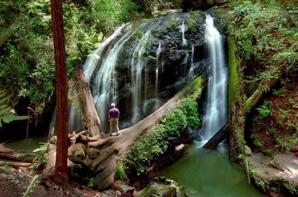 Fern Canyon Trail Waterfall Waterfall Mendocino Fern Canyon