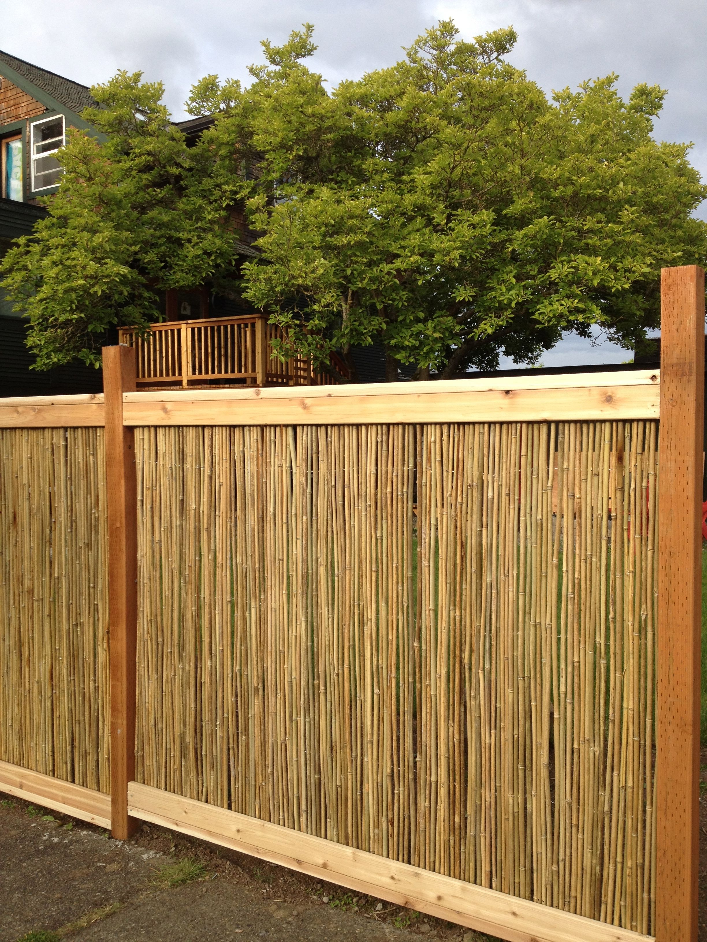 A Fence Created From Using 6 X8 X1 2 Fencing Purchased From Www Bamboo Home Com S Store In Seattle Bamboo House Design Patio Bamboo Picture Frames