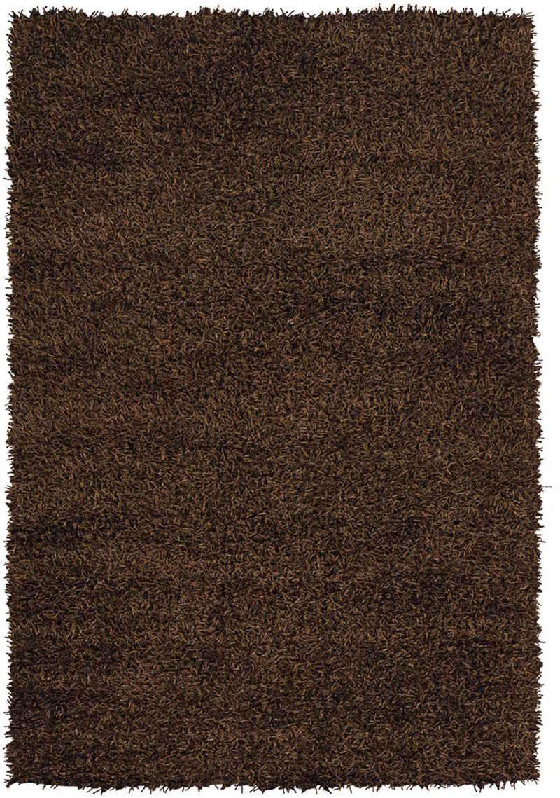 Chandra Zara ZAR-14538 Brown