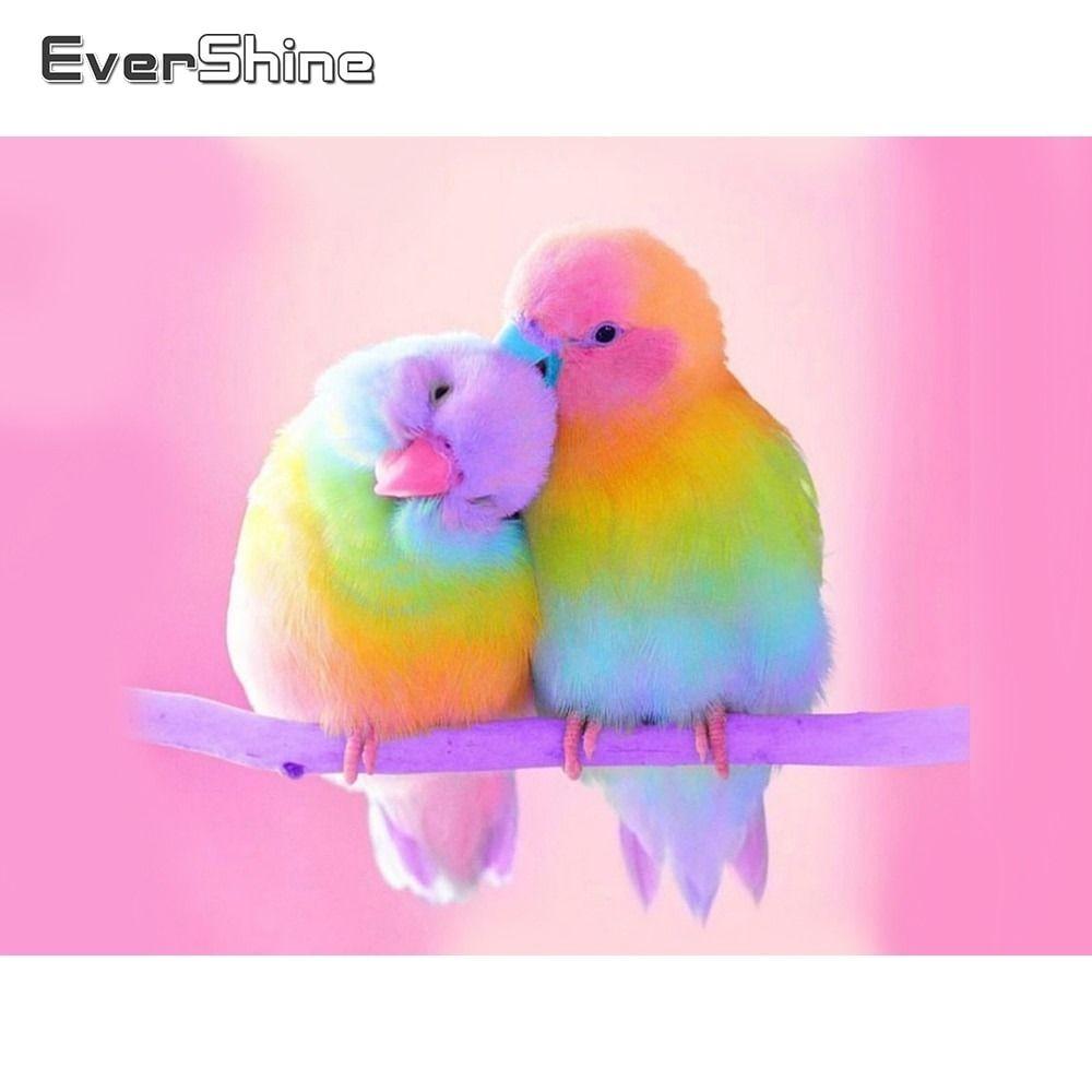 Evershine Diamond Mosaic Cross Stitch Kit Cartoon Colorful Bird 5D DIY Diamond Painting Full Dril...
