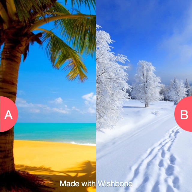 Summer Or Winter Click Here To Vote Http Getwishbone