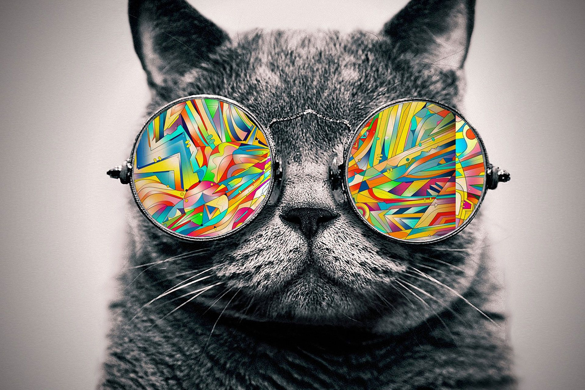 A Trippy Cat Desktop Background I Did On My Own I Hope It Came Out Pretty Good Cat Glasses Galaxy Cat Cat Sunglasses