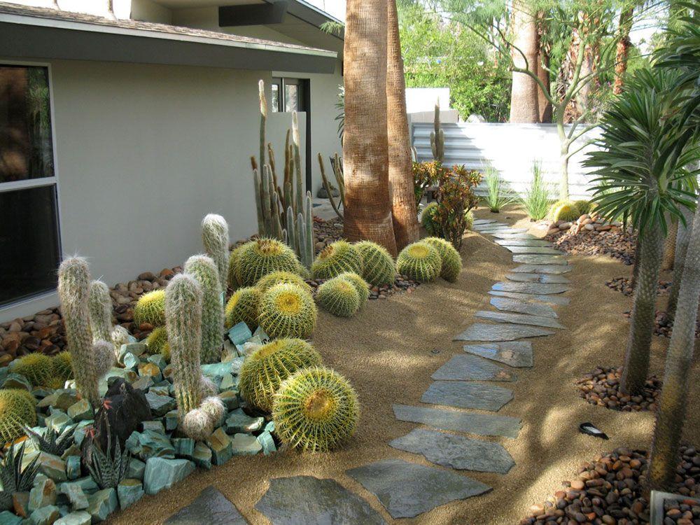 Cacti garden xeriscape garten pinterest garten - Sukkulenten garten ...