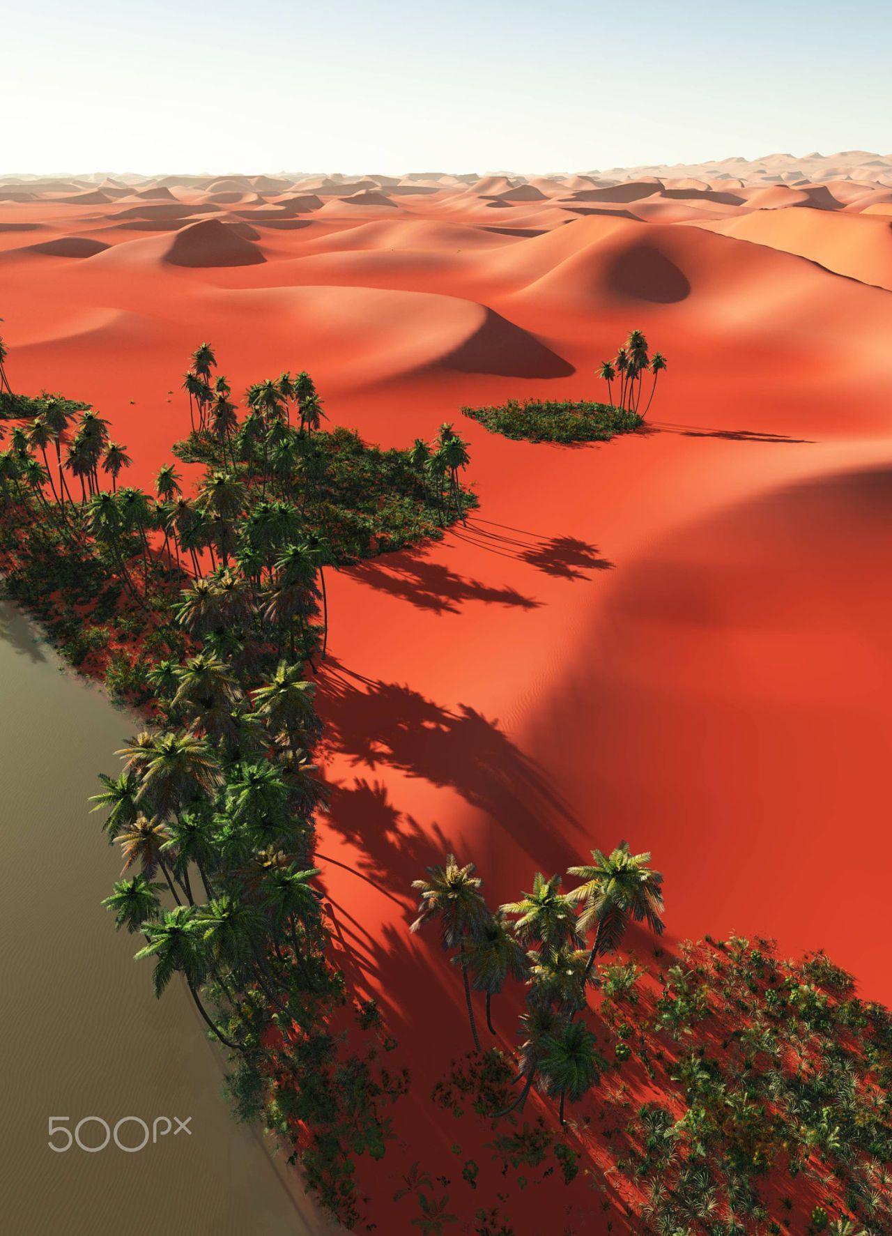 Oasis In The Sahara Desert By Andromedea 13 Follow Travelgurus