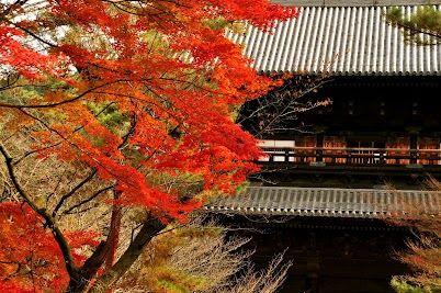 南禅寺天授庵。その他左京区南部の写真→  https://plus.google.com/b/104168476525148363878/s/omokoko-area-sakyo-nanbu