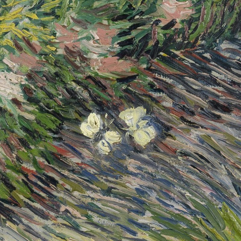 Grass And Butterflies Detail By Vincent Van Gogh  Lone -2640