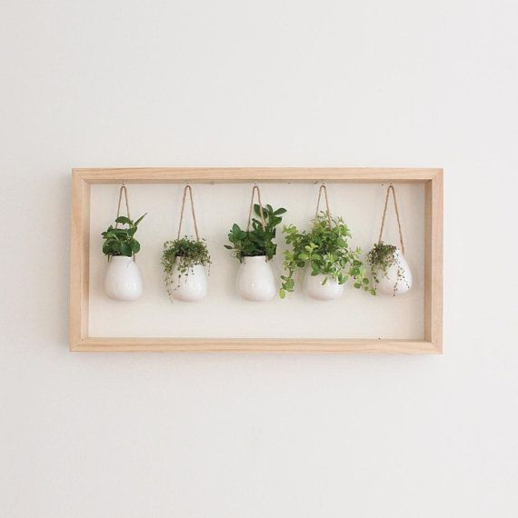 Photo of Indoor Herb Garden in Wooden Frame | Wall Mount Planter | Plant Gift | Hanging P…
