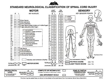ASIA Impairment Spinal Injury Association Scale