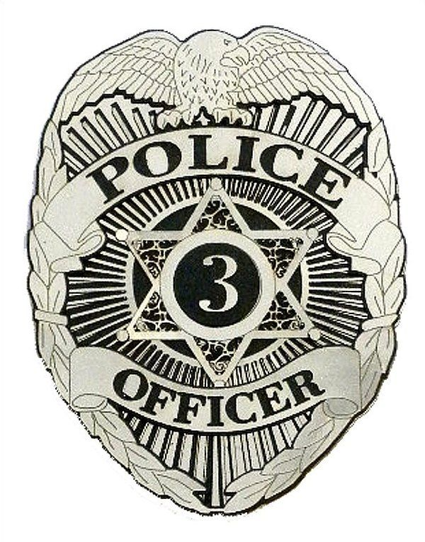 Police essay writing help