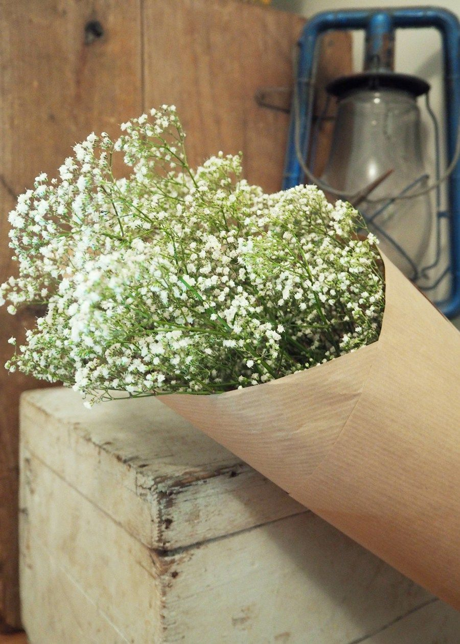 How to get a longer vase life out of your fresh flowers cut how to get a longer vase life out of your fresh flowers reviewsmspy