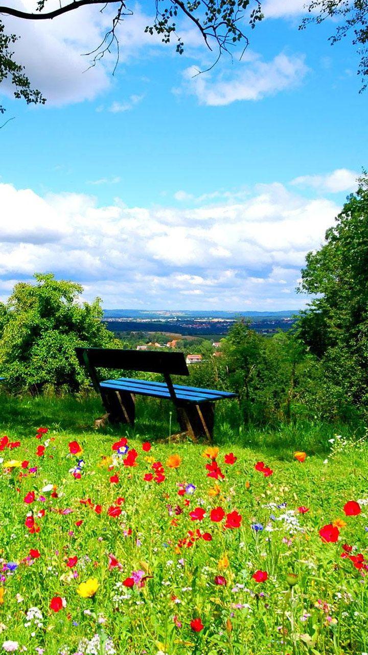 Pin On Beauty Nature