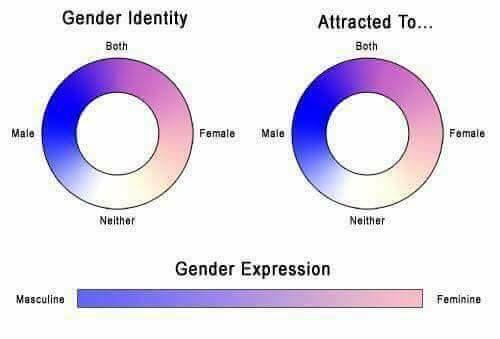 spectrum of sexuality