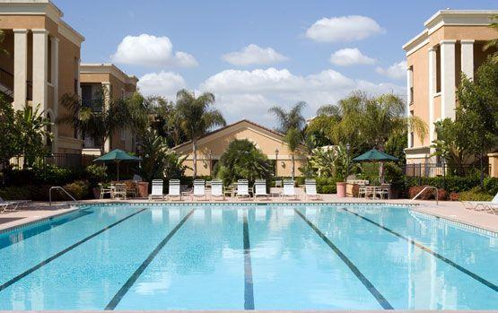 Las Palmas Apartments In Irvine Photo Gallery Pool Las Palmas Spa Pool