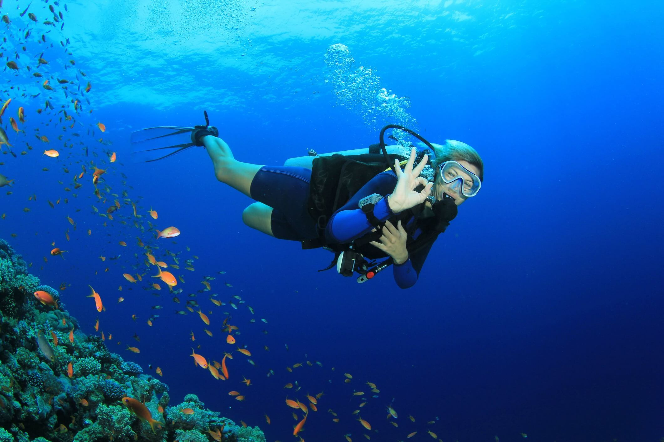 Cayman Brac Diving is the Best