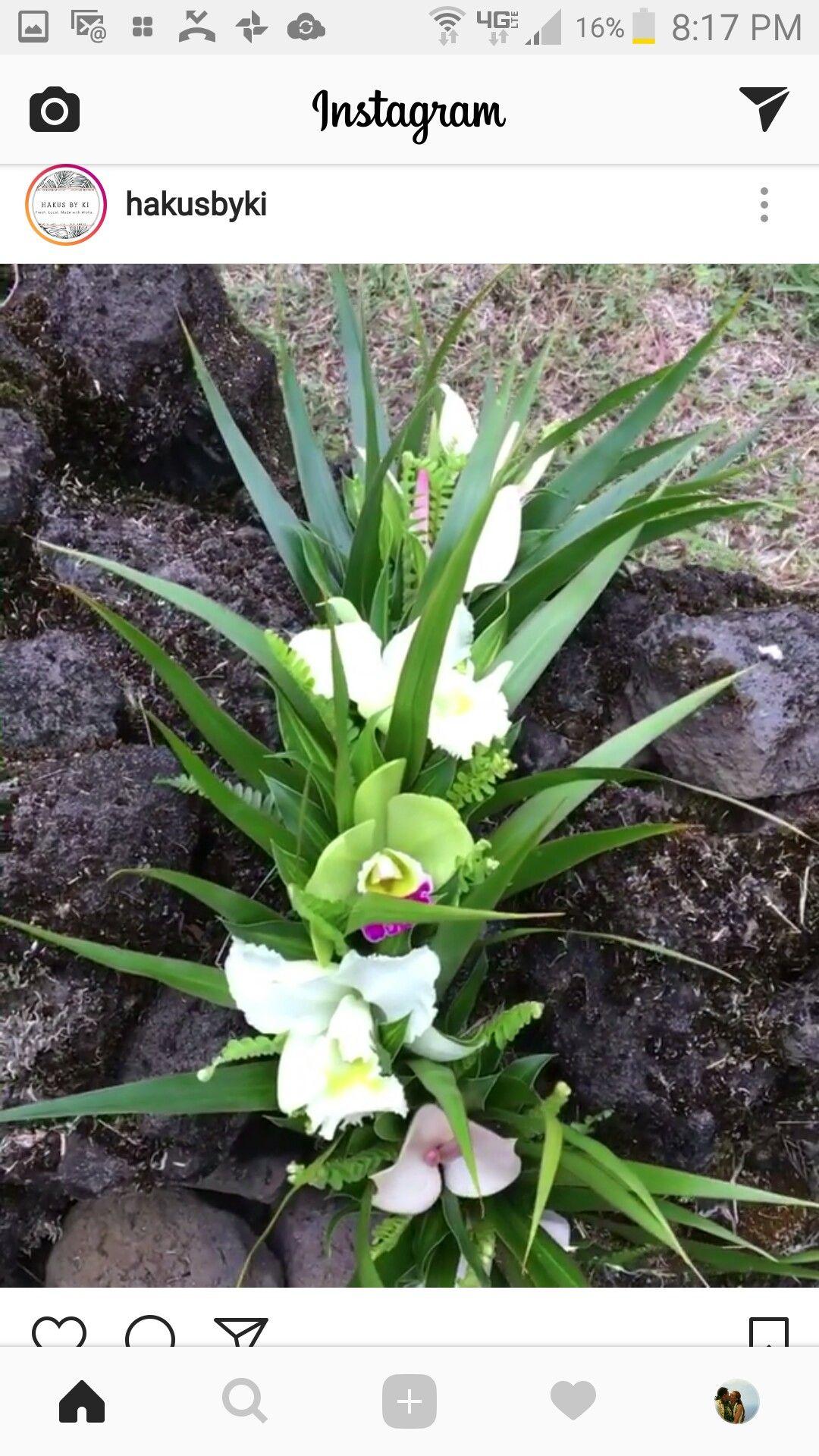 Idea by faith mackillop on leis and flowers hawaiian lei