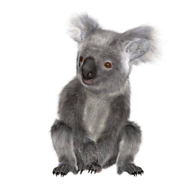 Why is the Environmental Minister selling off the Koala