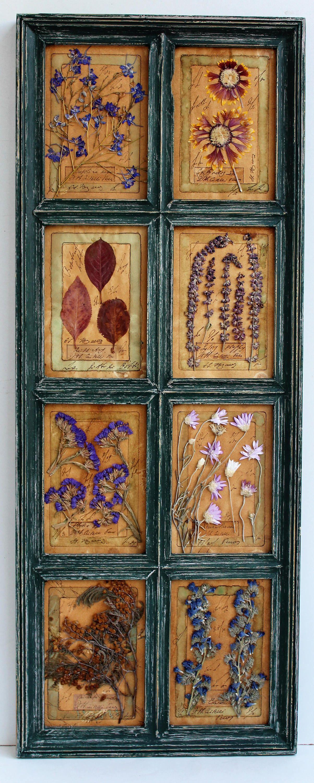 Herbarium pressed flowers flower wall decor wood frame herbarium