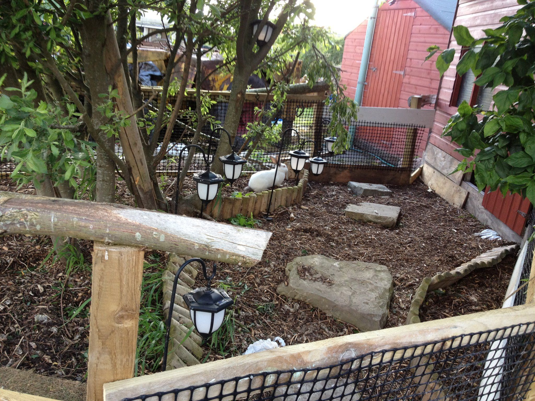 Buitenren konijnenheuvel huisvesting bunnybunch forums for Outdoor rabbit enclosure ideas