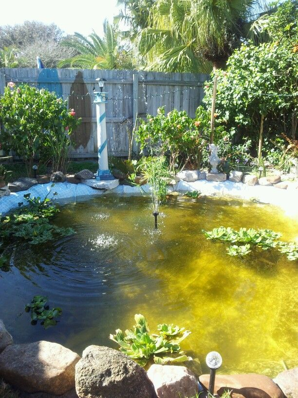 I recycled are old above ground pool into a koi pond how for Koi pond next to pool