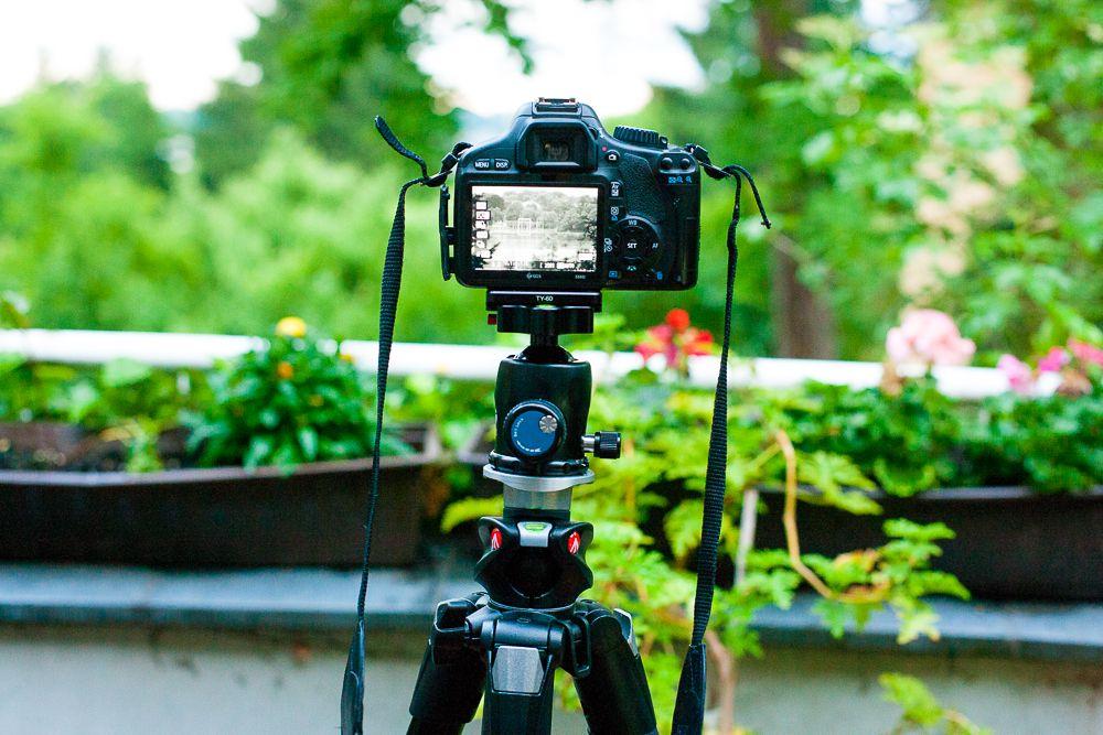 Canon 550d Auf Manfrotto 055xprob Stativ Mit Sirui K 20x Kugelkopf 51 Von 55 Stativ Kugel Canon