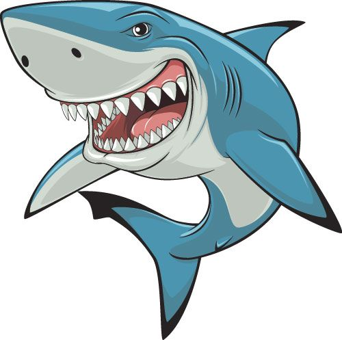 Realistic Shark Design Vector Animal Free