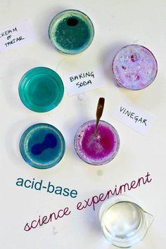 Cabbage juice science experiment.