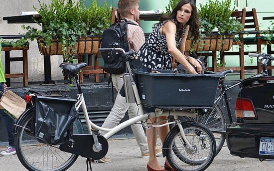 Diy Dog Bike Basket Ideas Inventos
