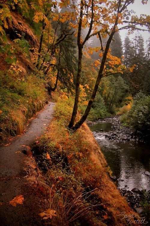 Eagle Creek Trail to Punchbowl Falls (Columbia River Gorge, Oregon) by Sarah Bartell