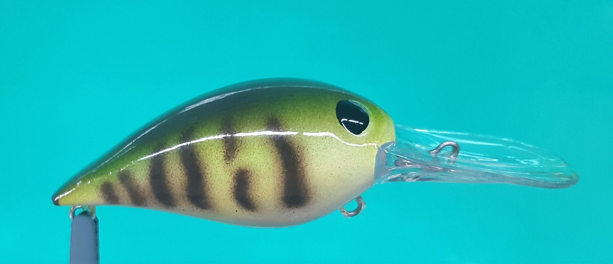 Dd Wiggle Wart Products And Warta
