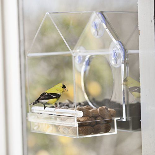 4 Each Medium Suction Cup Replacements for JCs Wildlife Window Bird Feeders