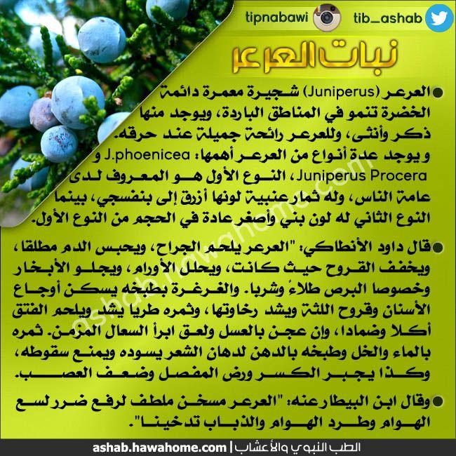 الطب النبوي و التداوي بالاعشاب فوائد عشبة العرعر Natural Remedies Health Remedies