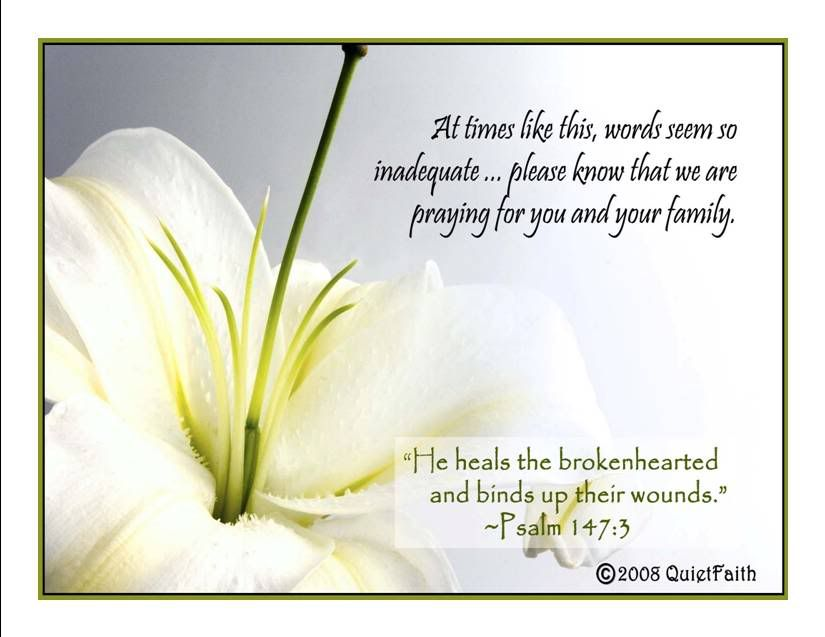 Sympathy Quotes: My Condolences To You And Your Family