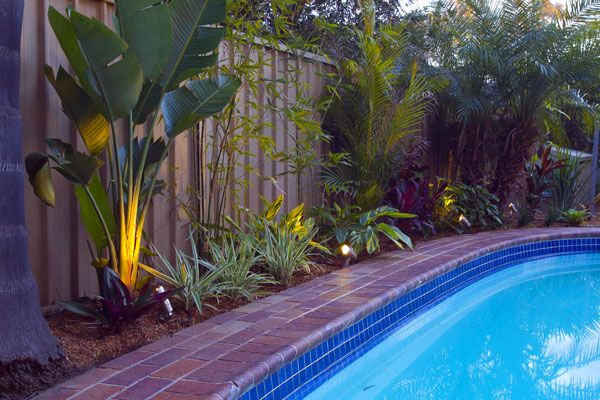 Landscaping around pools resort style garden outdoor for Gardens around pools