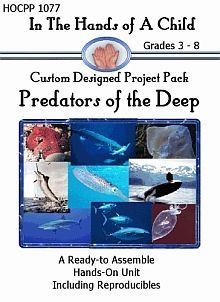 Predators of the Deep Lapbook - Hands of a Child |  | ScienceCurrClick